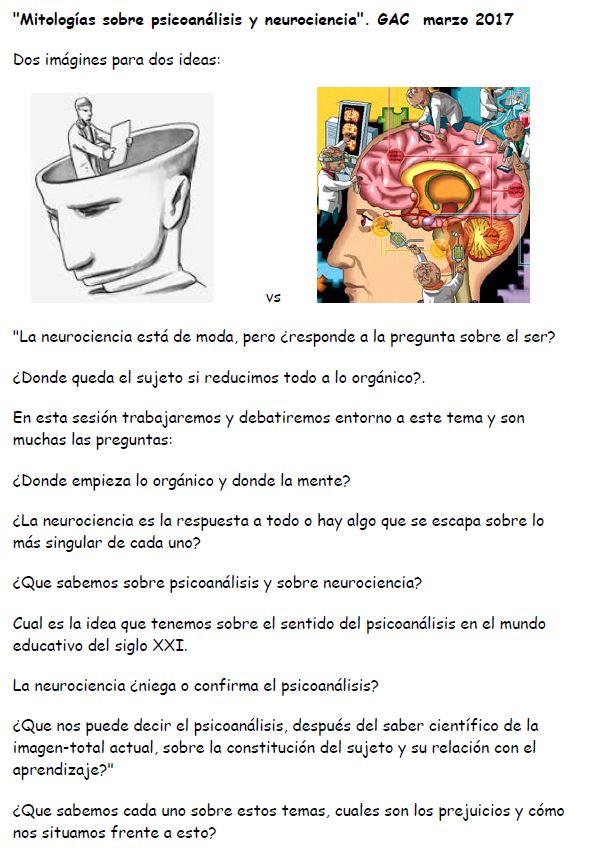 neurociencia-educacion-preguntas